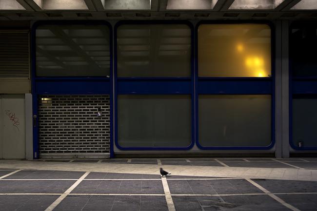 Title: Le pigeon, 30x45 cm, Inkjet print, 2012