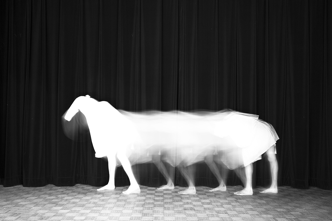 Title: Le cheval, Animalocomotion series, 20x30 cm, Backlight print on lightbox, 2015