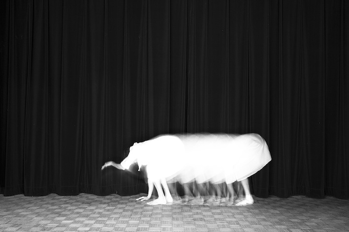 Title: L'éléphant, Animal locomotion series, 20x30 cm, Backlight print on lightbox, 2015