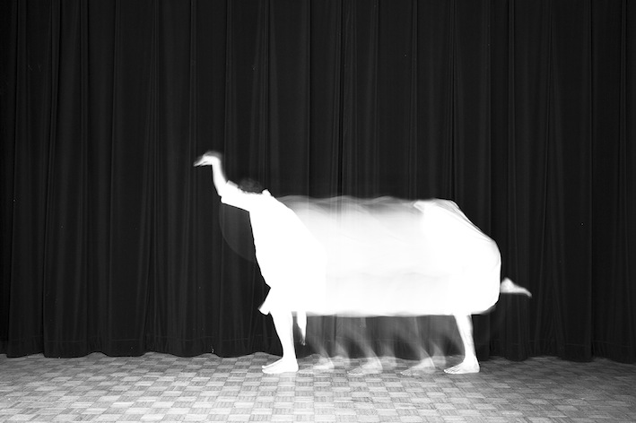 Title: L'autruche, Animal locomotion series, 20x30 cm, Backlight print on lightbox, 2015