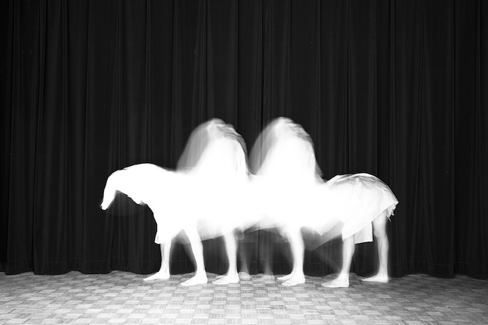 Title: Le chameau, Animal locomotion series, 20x30 cm, Backlight print on lightbox, 2015