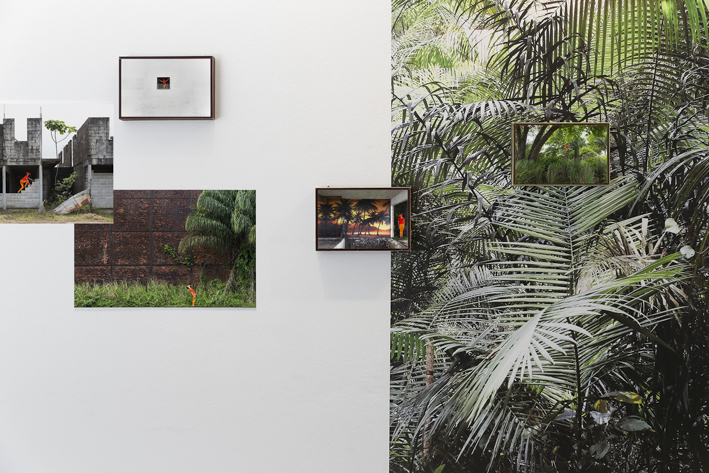 Exhibition view - Ibiscube - House of architecture french Guiana - Biennial Les Rencontres photographiques - Pigment prints on enthomologic box and vinyl